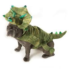 Null Dog Dinosaur Costume Dinosaur Costume Pet Costumes