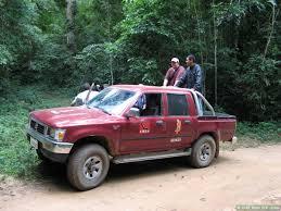 Brazil June 2006 Ecotour Day 5: Atlantic Rainforest - on 'The ...