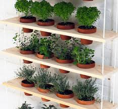 Hanging Herb Garden boards + rope + terra cotta pots + zip ties + drill