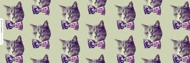cats twitter background. Perfect Cats Download Background Throughout Cats Twitter