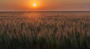 """Résultat de recherche d'images pour """"soleil couchant images"""""""