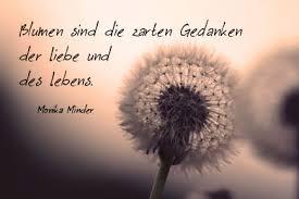 Zitate Zum Geburtstag Monika Minder
