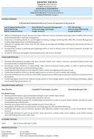 Digital Marketing Experience Resume Sample Spacesheep Co