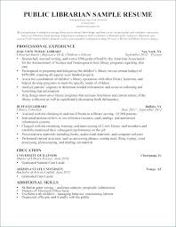 Summary Examples For Resume Writing Summary Resume Examples Customer