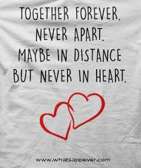 Forever In Love Quotes Beauteous 48 Best Quotes About Love With Images Triangle Quotes