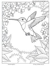 Small Picture coloring pages hummingbirds Hummingbird coloring flower