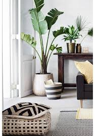 Plant Interior Design New 48 Minimalist Living Room Ideas Inspiration That Won The Internet