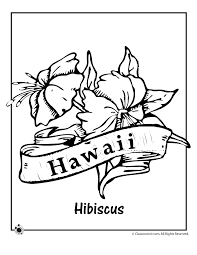 Small Picture State Flower Coloring Pages Hawaii State Flower Coloring Page