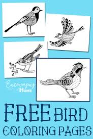 Printable Bird Coloring Pages Page Pinterest Crafts With