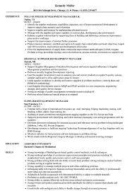 Supplier Development Manager Resume Samples Velvet Jobs