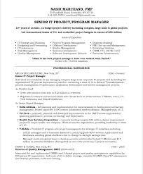 Management Resume Modern Pic Modern Management Resume Template Jan Program Management Resume