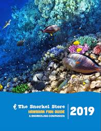 Oahu Fish Chart Maui Reef Fish Guide The Snorkel Store