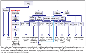 Whey Processing Flow Chart Whey Powder And Food Safety Risks A Lesson In Validation