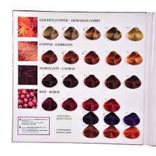 Ice Cream Hair Color Chart Book