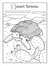 Small Picture Desert Tortoise Coloring page at GilaBencom Arizona Coloring