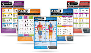Health And Fitness A1 Exercise And Training Posters
