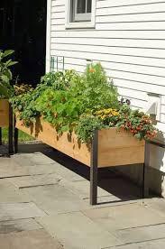 garden planter boxes cedar raised