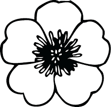 Flower Color Pages Flowers Coloring Pages Color Printing Flower