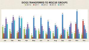 Chart Dog Graph Graphs And Charts City Of Sacramento
