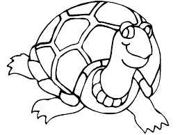 Small Picture Innovative Sea Turtle Coloring Page Free Downl 8637 Unknown