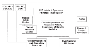 Nih Organizational Chart Clinical Organizational Chart For The Lincl Study Bb Ind