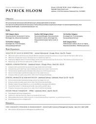 Simple Resumes Templates Mesmerizing 48 Basic Resume Templates