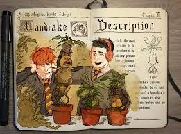 colorful spell harry potter magic books gabriel picolo