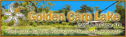The <b>Golden Carp</b> Lake - Welcome