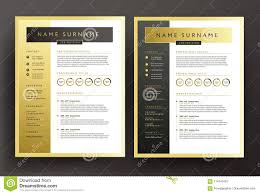 Professional Resume Background Ataumberglauf Verbandcom