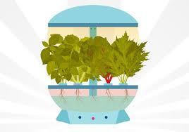 aero garden com. AeroGarden- A Dependable Product Aero Garden Com