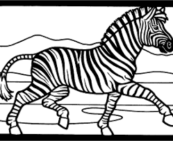 Small Picture Zebra Coloring Pages Coloring Pages To Print Zebra Coloring Pages