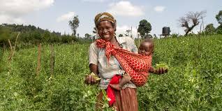 Farm <b>Africa</b>