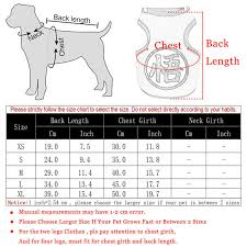 Pet Clothes Size Chart Cute Cartoon Pet Dog Clothes For Small Dogs Cool Mesh Pet T Shirt Vest Summer Puppy Cat Clothing Chihuahua Yorkie Clothes Xs Xl