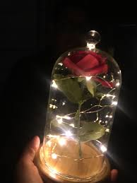 diy beauty and the beast enchanted rose i made for my girlfriend