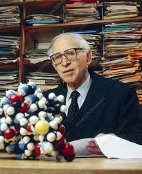 Sir Aaron Klug with model of zinc finger - Stock Image - H411/0086 -  Science Photo Library
