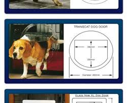 pet cat dog doors installation