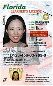 Hernando County Fl And Renewals License Driver