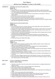 Executive Resume Sales Account Executive Resume Samples Velvet Jobs 18