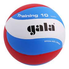 <b>Мяч волейбольный Gala Training</b> 10, BV5561S, размер 5, PU ...