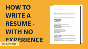 Writing A Professional Resume How To Write A Resume With No Job Experience Step By Step Resume 23