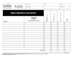Daily Sales Activity Report Excel Fascinating New Free Daily Sales Report Excel Template For Daily Sales Report