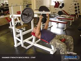 More Volume U003d More Strength  Breaking MuscleStrength Training Bench Press
