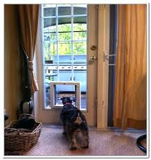 automatic doggie door electronic dog door dog doors for a sliding glass door with electronic pet