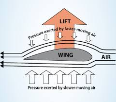 Image result for free bernoulli's principle image for use