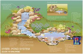 Small Picture Backyards Winsome Koi Pond Design Plans 96 Garden Ponds And