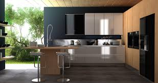 modern kitchen black and white. Miraculous Modern Style Kitchen Designs Design Black And White