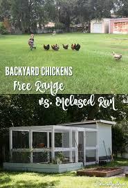 Start Raising Chickens  Beginning FarmersHow To Keep Backyard Chickens