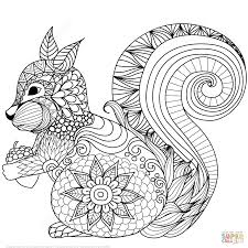 the lovely squirrel zentangle coloring