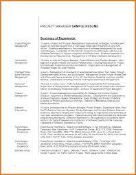 6 Resume Skills Summary Examples Budget Reporting
