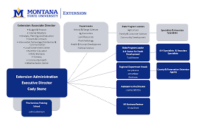 Chart Organization Of Local Government Msu Extension Organizational Chart Msu Extension About